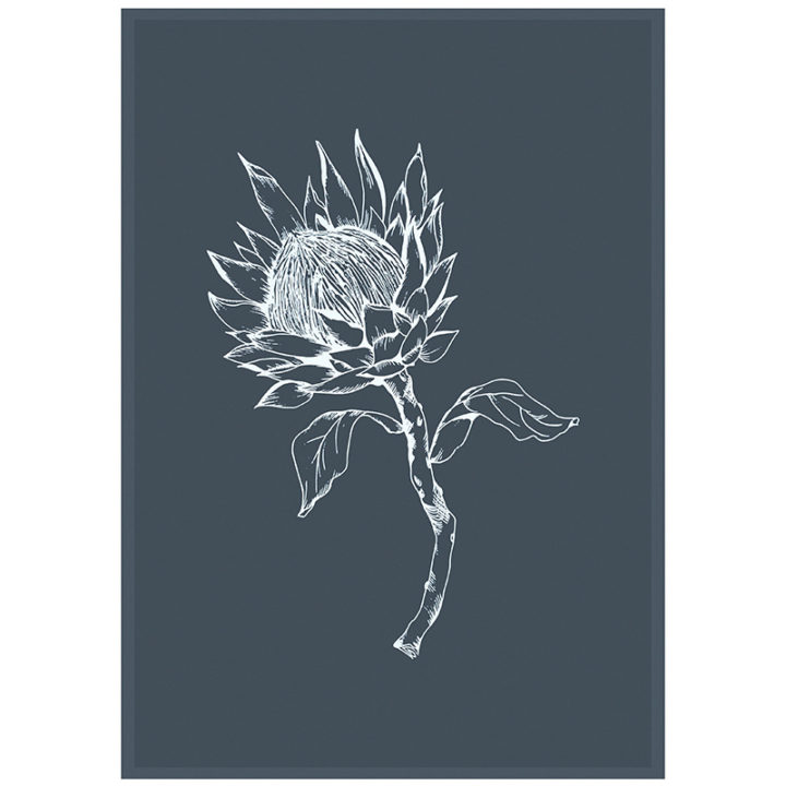 Grey King Protea Tea Towel